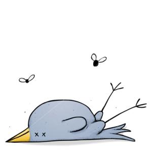 dead-bird1